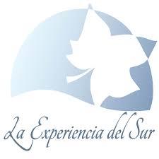 >Asilo La Experiencia del Sur